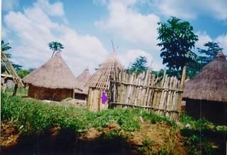 Guinea village in rain forest