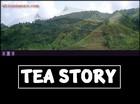 tea page