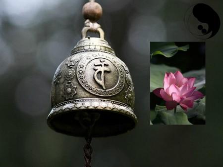 tao and zen lotus